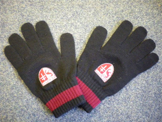 Click to enlarge image embroidered_gloves.jpg
